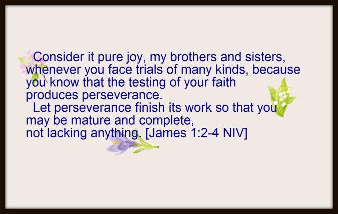 James1-2_8 Rev