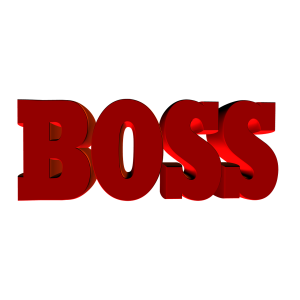 boss-432713_1280