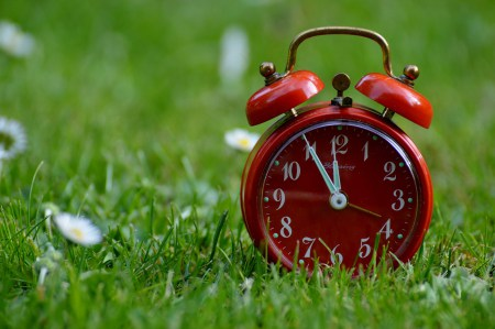 alarm, time, grass, red, green